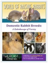 Domestic Rabbit Breeds E-Book