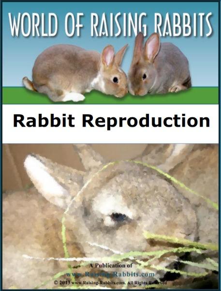 Rabbit Reproduction E-Book from Raising-Rabbits.com