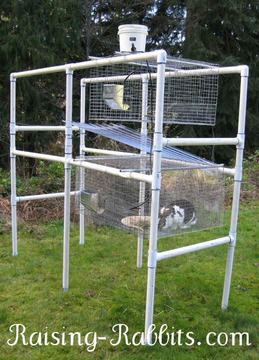 Outdoor show or livestock rabbit hutch and wire cage combo. This hutch is moved under cover before the rabbits move in.