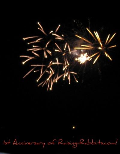 Raising-Rabbit.com's First Anniversary Fireworks