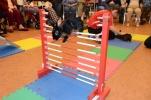 Pet rabbit practicing its rabbit jumping skills