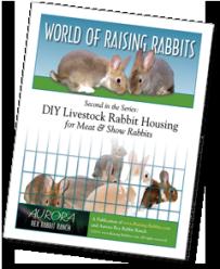 DIY Livestock Rabbit Housing for Meat & Show Rabbits