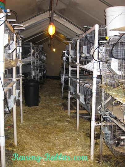 Aurora Rex Rabbit Barn showing several PVC rabbit hutch frames