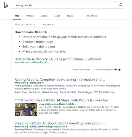 Raising-Rabbits ranked #1 and #3 on the Bing search engine for the term raising rabbits, in September 2017