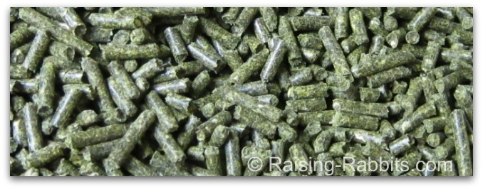 Fresh green pelleted rabbit feed