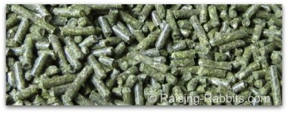 Deep green fresh pellets of Sherwood Forest rabbit feed