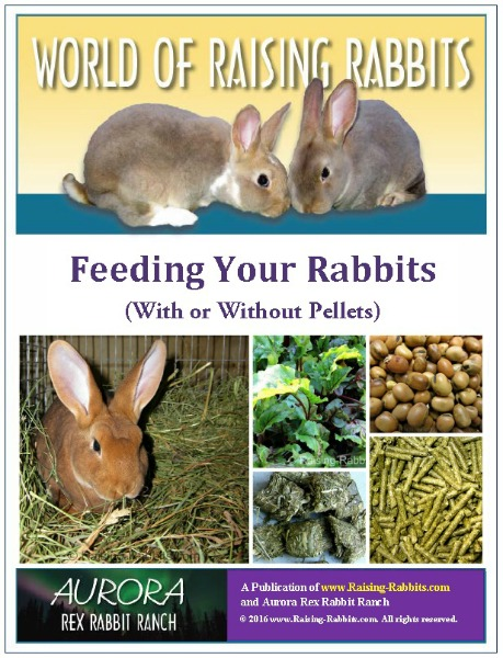 Feeding Your Rabbits (With or Without Pellets), a World of Raising Rabbits e-book from Raising-Rabbits
