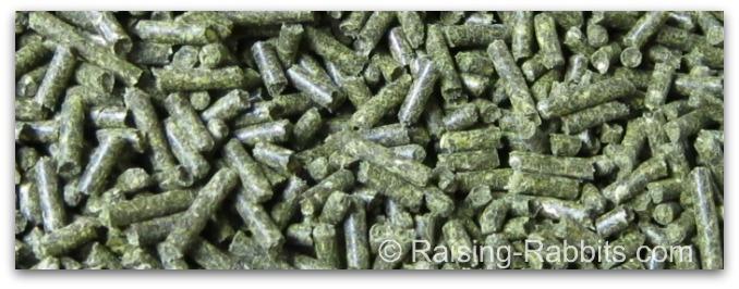Fresh green pelleted rabbit feed