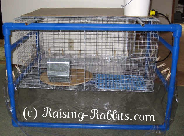 Large indoor rabbit cage with blue PVC indoor hutch frame