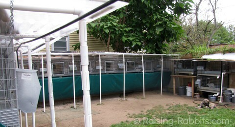 Rabbit Farming - the ingenious rabbit manure collection system created by our friend Lisa in CT