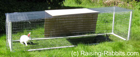 PVC and wire rabbit run housing 2 rabbits