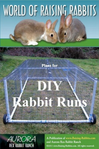 Free Rabbit Hutch Plans - A Frame Rabbit Hutch, Build a Rabbit Hutch