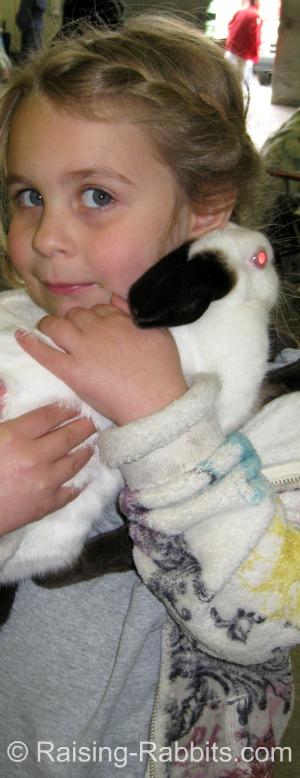 B-Locus Rabbit Colors - Black Himalayan rabbit with friend