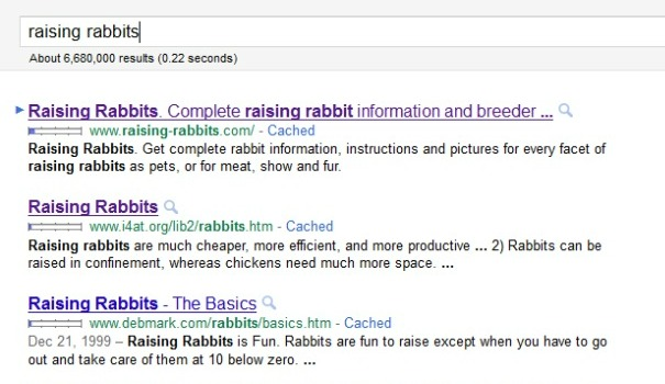 Google places Raising-Rabbits.com at #1 on first page of Google search results on 8.10.2011