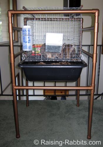 Indoor Rabbit Cage Set Up