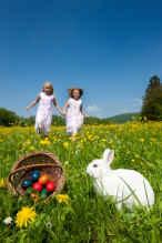 Rabbit and Easter Egg Hunt