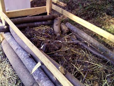 Compost Piles under Hutches