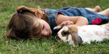 Girl in field playing with pet lop rabbit