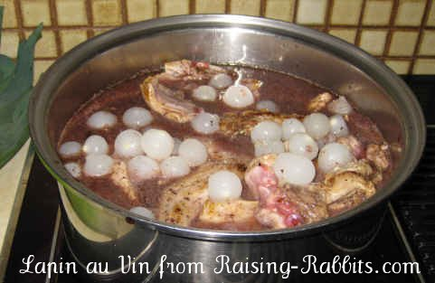 Rabbit in Wine Recipe cooking on the stovetop