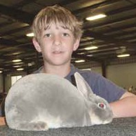 Texas 4H rabbit breeder  and his opal mini-rex show rabbit