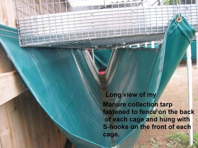 Lisa's heavy-duty under-the-cage tarp for manure collection